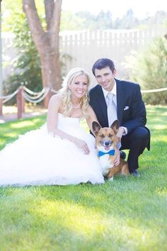 Another precious wedding picture!!!  Anya, Rocky and Ben. #corgi