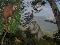 Caribbean islands reveal a lost world of ancient mammals #Geology #GeologyPage