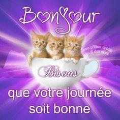 Bonjour, Bisous, que votre journée soit bonne #bonjour cafe chatons reveil mignon