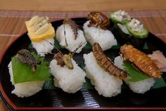 Insect sushi is sort of the latest thing in Japan- its high in protein, rather inexpensive, and supposedly tasty. A few grub worms, some lightly fried crickets, a centipede of sorts all lay delicately on a bed of sushi. Gross Food, Weird Food, Dieta Club, Edible Insects, Edible Plants, Lean Cuisine, Healthy Facts, Exotic Food, Dinner Is Served