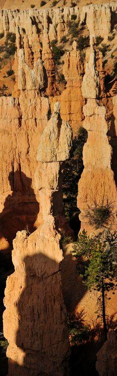 Fairyland+Canyon+Bryce+Canyon+July+2012+12