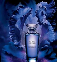 Iris Noir Yves Rocher for women Pictures