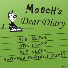 'Mooch's Perfect Day' Print | MUTTS Another Perfect Day, Diary Entry, Muscle, Cat Comics, Simple Life Hacks, Dear Diary, Funny Animals, It Cast, Relax