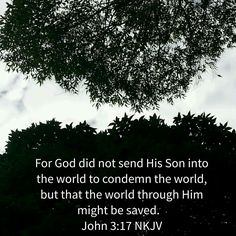 No to condemnation, yes to salvation