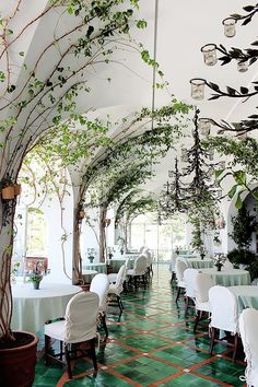 Get a fancy dinner at a restaurant. [La Sponda restaurant in Positano is draped in climbing vines] Decoration Restaurant, Deco Restaurant, Restaurant Interior Design, Luxury Restaurant, Positano Restaurant, Modern Restaurant, Outdoor Restaurant Design, Courtyard Restaurant, Hawaiian Restaurant