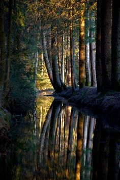 Beautiful Nature   See more Amazing Snapz