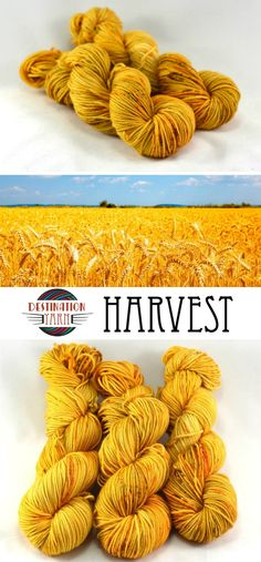 This hand dyed, speckled yarn is the golden yellow of a harvest. Sock/fingering weight yarn for knitting, crochet, and DIY craft projects.