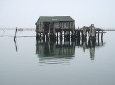 Cycling on the Lido and Pellestrina: