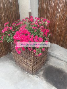 Update our hot seller item -Natural willow planter at the Canton Fair this year!  Please do not hesitate to contact me if you have queries!  Jining Golden Building Trade Co., Ltd. Website: www.jnjzgm.com The E-CATALOG on ISSUU: https://lnkd.in/f5HUjqb Leslie Wong Managing Director Mobile phone: 86 15854629777 86 15712754477 Tel: 86 537 6019199/6017111 Fax:86 537 6019299/6017222 E-mail: yongcanjun@gmail.com Lesliewong@jnjzgm.com Skype: seven.seven1985 WhatsApp: 86 15854629777 Viber: 86…