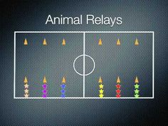Physical Education Games - Animal Relays - YouTube