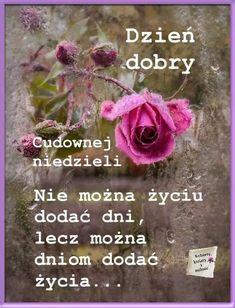 Good Morning, Good Morning Funny, Buen Dia, Bonjour, Good Morning Wishes