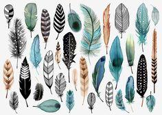 Resultado de imagen de dibujos plumas a colores