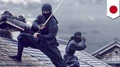 「忍者」の画像検索結果