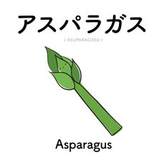 [33] アスパラガス   asuparagasu   asparagus