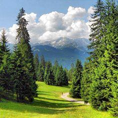 Am #wank #garmisch #partenkirchen #berge #mountains #bayern #oberbayern #bavaria #alps #alpen #bavarianalps #bd #bdphotoshare #nature #nature_lovers #placewhereilive #sommer2013 #hiking #berge #bergtour #Padgram