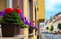 @Boppard, Germany