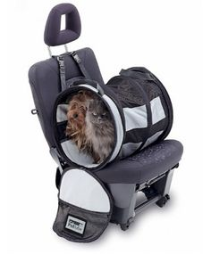 Pet Barriers : Small Pet Tube Car Kennel