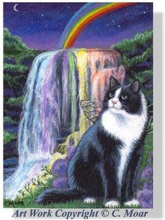 Long Haired Tuxedo Angel Cat Rainbow Bridge Water Falls ACEO Original Art CMOAR