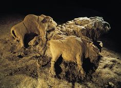Bison bull and cow, modelled in clay in the rotunda of the Tuc d'Audoubert, Ariege.