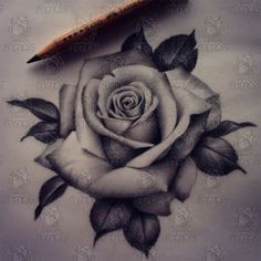 Want my roses to look as real as I can get them, when the time comes.