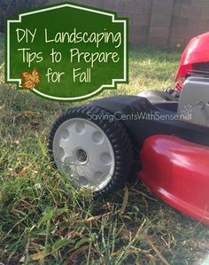 DIY Landscaping Tips to Prepare for Fall #landscaping #yard #DIY
