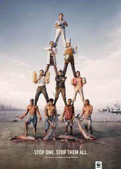 WWF AD, paras a uno, paras a todos.
