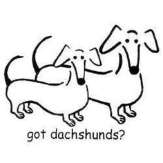 got dachshunds? Decal