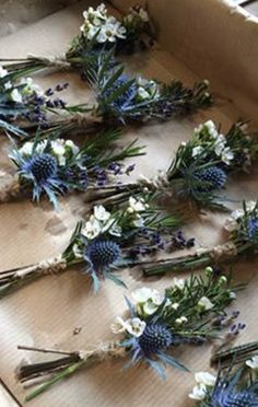 My buttonholes Rustic boho country garden wedding. Buttonholes with thistle, sea holly, Eryngium, and Lavender and Wax Flower. Tied with natural twine. Wax Flowers, Blue Wedding Flowers, Wedding Bouquets, Wedding Buttonholes, Boho Flowers, Flowers Garden, Wild Flower Wedding, Wedding Blue, Order Flowers