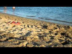ayvalık www.tatilemlak.net