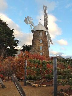 Callington Mill, 1837, Oatlands Tasmania. Gold Coast Australia, Land Of Oz, Australia Living, Family Memories, Le Moulin, Windmills, Big Island, Tasmania, Historical Photos