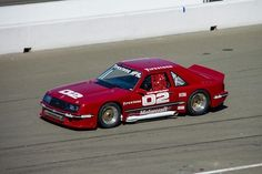 1981 Protofab / Firestone Ford Mustang, which raced in the IMSA GTO Series from 1981-1983