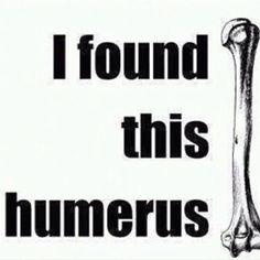 Anatomy Humor