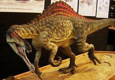 Escultura do Angaturama limai, dinossauro carnívoro de grande porte que viveu há 110 milhões de anos na Chapada do Araripe, no Ceará. A obra foi feita pelo paleoartista Orlando N. Grillo. Clique na imagem para ter mais informações sobre essa espécie. (fot