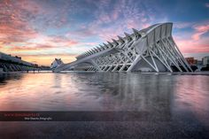 The City of Arts and Sciences (Ciudad de las Artes y las Ciencias) – Valencia, Spain
