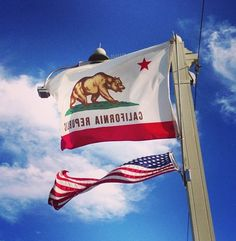 California flag : 'The Golden State' California Flag, California Republic, Usa Flag, Golden State, Childrens Books, Liberty, Summertime, Happiness, America
