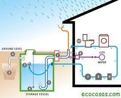 Photo Of AP Rainwater Harvesting U0026 Graywater Solutions   Sebastopol, CA,  United States. A Typical Rainwater Harvesting System.