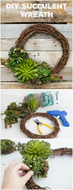 succulent wreath diy Spring Succulent DIY Wreath Article Physique: Purses are the brand new footwear Suculentas Diy, Cactus Y Suculentas, Succulent Centerpieces, Succulent Wreath, Succulent Terrarium Diy, Succulent Outdoor, Ikebana, Craft Tutorials, Diy Projects