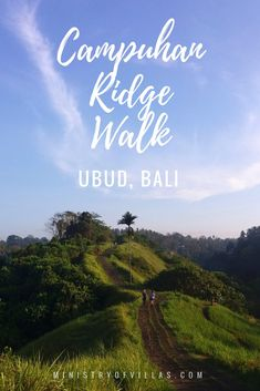 Campuhan Ridge Walk is one of the most beautiful spots in Ubud, Bali. Click through how to find this place and when is the best time to visit Campuhan Ridge Walk.