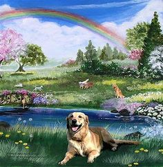 The Rainbow Bridge in heaven for pets!