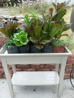 Purely Simple  Deluxe Gro Matic With Shelf Totally Automatic Self Watering  Deck And Patio