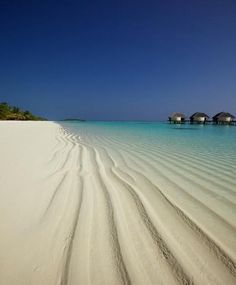 Beautiful Beach - Maldives. I just want to bury my feet in that white sand!! Right now!