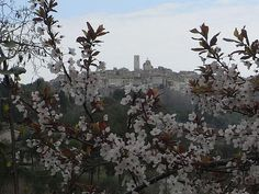 saint paul de vence Antibes, My Escape, French Riviera, Free Travel, Provence, Destinations, To Go, France, Spaces