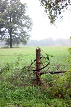Barbed wire fences are awesome! Barbed wire fences are awesome! Country Fences, Rustic Fence, Country Farm, Country Life, Country Roads, Country Living, Front Yard Fence, Fence Gate, Fenced In Yard