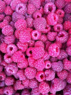 Pink and Purple Berries ღ