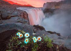 Islandia, Park Narodowy Vatnajökull, Rzeka Jökulsá á Fjöllum, Wodospad Dettifoss, Wodospad, Góry, Światło, Kwiaty