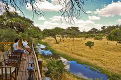 "**NEW LISTING** Mogotlho Safari Lodge ~ ""close to the heart-beat of Africa"" Game reserve & bush lodge accommodation in the Okavango Delta Nestled in-between a Leadwood forest, overlooking the Khwai River and beyond, sits the beautiful Mogotlho Lodge, which boasts a majestic thatch roofed dining and lounge area which leads out onto an elevated viewing deck over the riverbank. Spectacular sunsets can be admired over sundowners from the quaint bar or from the deck of your comfort en-suite tent. Deck Over, Okavango Delta, Thatched Roof, Game Reserve, Heart Beat, Lounge Areas, In A Heartbeat, Sunsets, Safari"