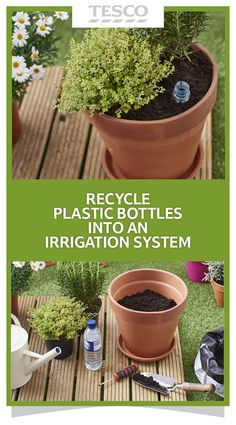 Such a great idea for the garden! This upcycled water bottle irrigation system is a clever way to keep your plants watered while you're away for the weekend or on holiday.   Tesco Living
