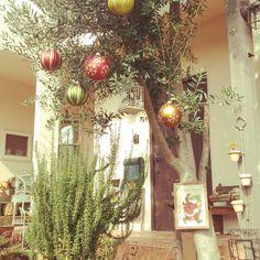 hiyori-naさんの、玄関アプローチ,コンテストに参加しています。,クリスマス,のお部屋写真
