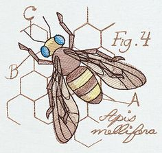 Create a crafty bug collection with this Apis mellifera design, accented with colorful sheer stitching.