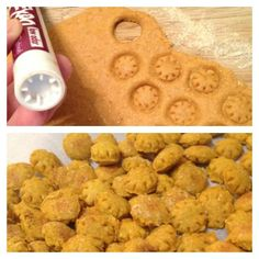 Expo marker as a cookie cutter for dog training treats!  Using any dog treat recipe dough, flatten dough with dough roller and firmly press bottom of expo marker down. Since they're small, only bake for 10 minutes! These ones were organic pumpkin.